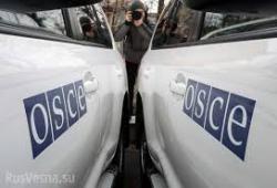 Глава МИД Австрии: ОБСЕ намерена увеличить число наблюдателей в Украине