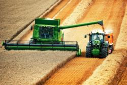В Украине аграриями собрано 40 млн. т зерна – Минагрополитики