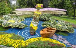 В Киеве на Певческом поле открылась выставка хризантем