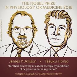 Названы лауреаты Нобелевской премии 2018 года в области медицины