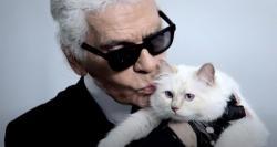 Кошка Лагерфельда может унаследовать часть состояния своего хозяина