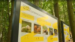 В Киеве открыли первую в Украине городскую экотропу