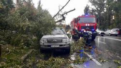 Из-за непогоды обесточены 205 населенных пунктов в шести областях Украины