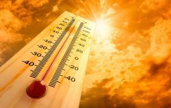 В Киеве зафиксировали самый жаркий день 2019 года
