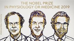 Названы лауреаты Нобелевской премии в области медицины
