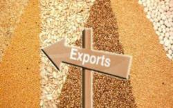 Украина увеличила экспорт агропродукции в страны ЕС на 38%