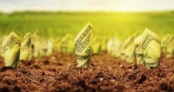 Земельная реформа привлечет внутренние инвестиции в аграрный сектор - Минэкономики