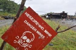 Правительство Австрии выделило миллион евро на помощь жителям Донбасса