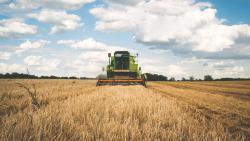 В Госгеокадастре заявили о готовности к запуску рынка земли в Украине