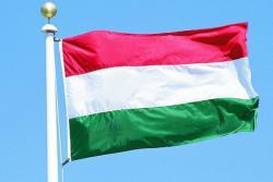 Венгрия обратилась к РФ с просьбой о защите языковых меньшинств в Украине