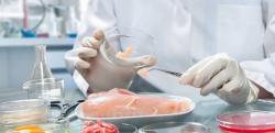 ЕС приостановил импорт курятины из Украины из-за птичьего гриппа