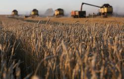 Кабмин принял решение о создании Фонда гарантирования кредитов для аграриев