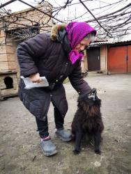 Зеленский вмешался в ситуацию женщины с собакой и коммуналкой