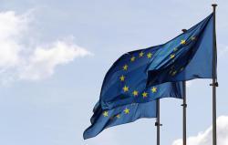 Евросоюз призывает Россию использовать ее влияние на боевиков для выполнения Минских соглашений