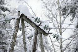 В Украине обесточены 203 населенных пункта из-за непогоды