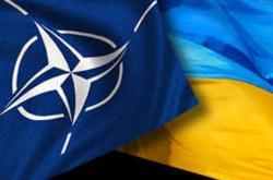 Кабмин одобрил нацпрограмму сотрудничества с НАТО