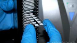 Британцы представили антиген для борьбы с коронавирусом COVID-19
