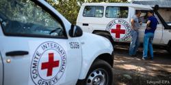 Красный Крест отправит на Донбасс 16 грузовиков с продуктами и средствами гигиены для нераспространения COVID-19