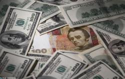НБУ за неделю купил  на межбанке $327,7 млн
