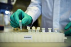 Коронавирус в Беларуси: жертвами болезни стали 13 человек