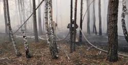 В Чернобыльской зоне третий день тушат пожар