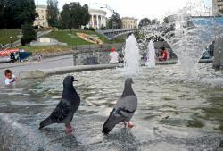 Жаркая погода в Киеве установила четыре температурных рекорда